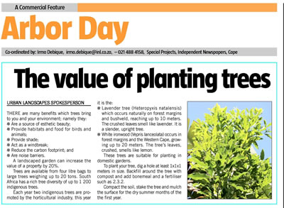 arbor_day_the_value_of_planting_trees.jpg