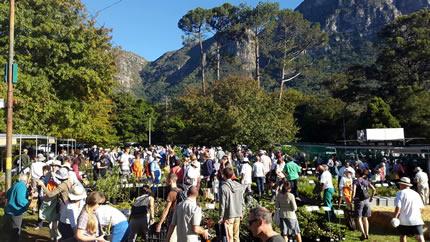 Kirstenbosch Rare Plant Fair 2015